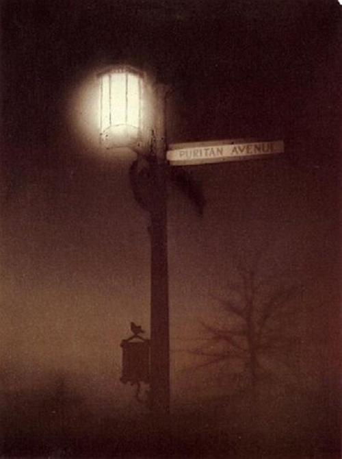 1920-puritan-avenue-by-alfred-cohn.jpg