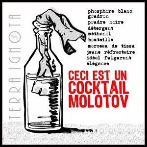 2012 recette molotov
