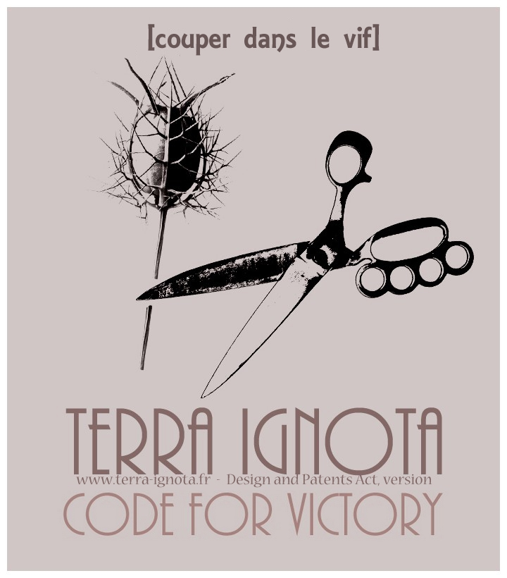 Affiche terra ignota code for victory III 1