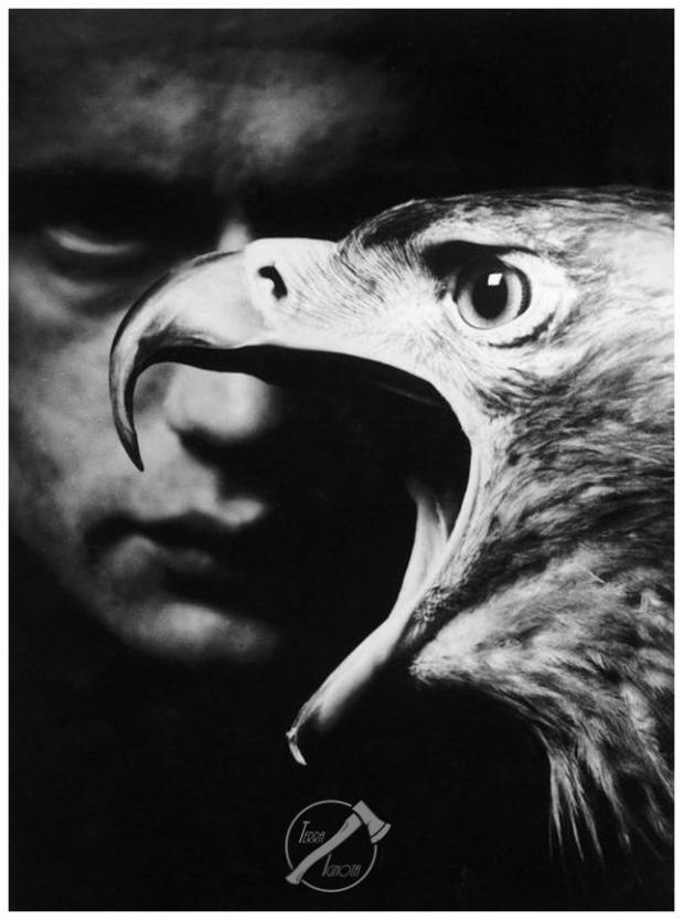 Ami de nid d aigle