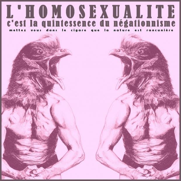 Terra ignota l homosexualite c est la quintessence du negationnisme
