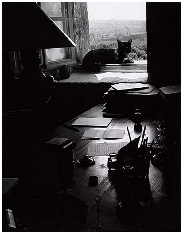 Terra ignota photo de willy ronis 1955